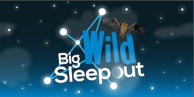 Big Wild Sleep Out 2019 at RSPB Flatford Wildlife Garden!