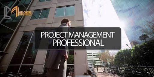 Project Management Professional Certification 4 Days Virtual Live Training (Weekend)