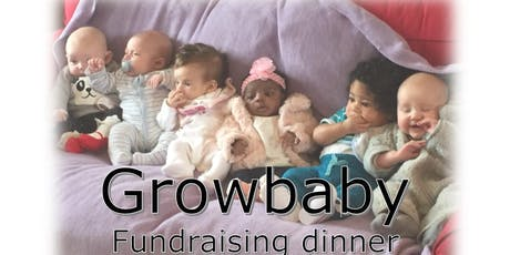 Growbaby fundraiser dinner and dance tickets