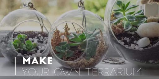 Make Your Own Terrarium Diffuser