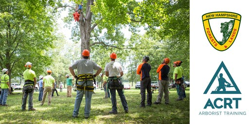 Working in Trees: Safety Workshop