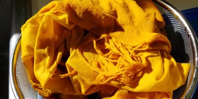 Natural Dyeing for Beginners: The Basics