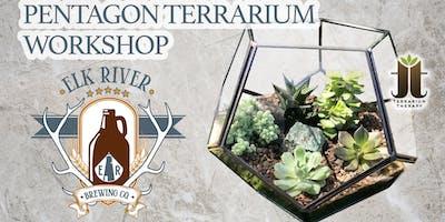 Pentagon Succulent Terrarium at Elk River