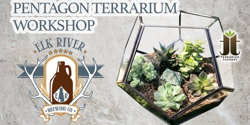 Pentagon Succulent Terrarium at Elk River Brewing Company
