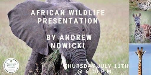AFrican Wildlife Presentation