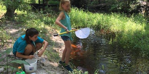 Woods, Water, & Wildlife