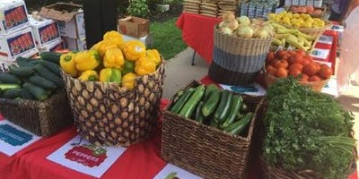 "Martha's Table Taste of Summer 2019 ""Joyful Food Market"""