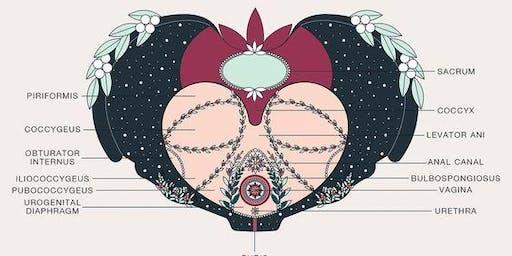 Women's Health: The Menopause and Pelvic Floor