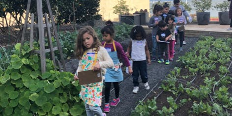 Healthy Kids Class at Stem Kitchen and Garden