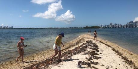 Clear Bottom Kayak Tour w/ Island Visit tickets