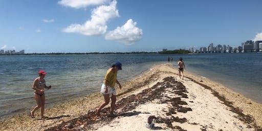 Clear Bottom Kayak Tour w/ Island Visit