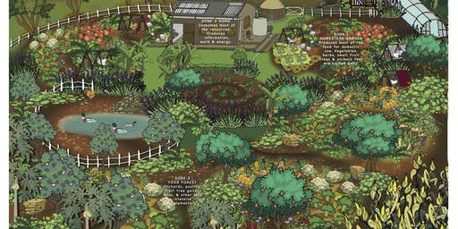 Plant Guilds Explained- Beyond Companion Planting