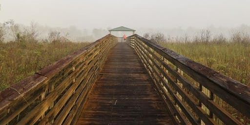 """Adventure Awaits - """"Fun"""" Run Hosted by Hard Exercise Works at Royal Palm Beach Pines Natural Area"""