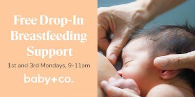 Drop-In Breastfeeding Support