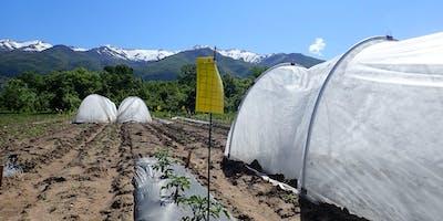 Vegetable Grower Meeting (USU Extension)