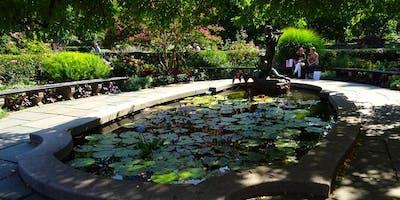 Central Park Secrets Walking Tour