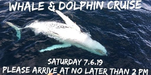 Whale & Dolphin Cruise