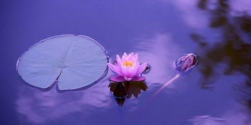 Introductory Jyoti Meditation Classes