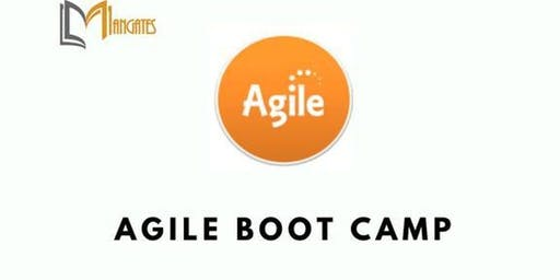 Agile Boot Camp 3 Days Training in Montreal