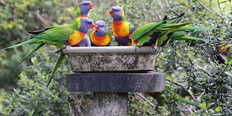 Gully Gardeners - Attracting Native Birds to your Garden tickets