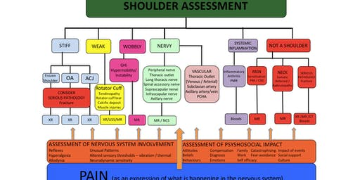 The Shoulder Masterclass