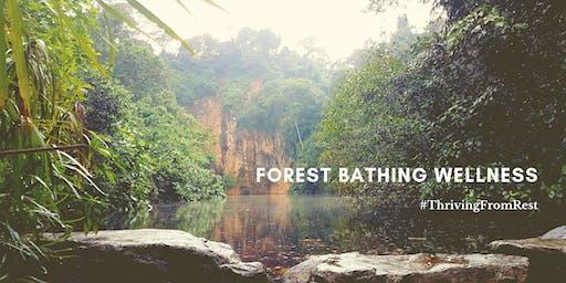 Forest Bathing Wellness @ Bukit Batok Nature Park