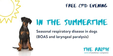 In the summertime - Seasonal respiratory disease in dogs tickets