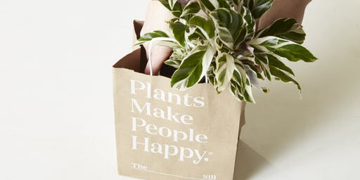 Art Night with The Sill and Blank Studio: Crafts, Plants and Wine!