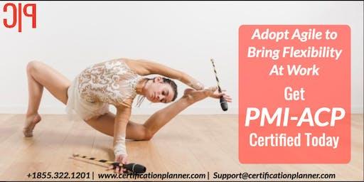 PMI Agile Certified Practitioner (ACP)® Bootcamp in Regina(2019)