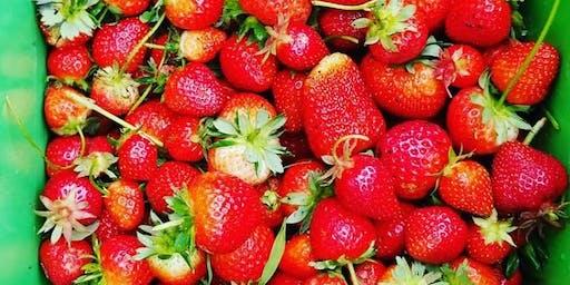 DC Strawberry Festival w/ Vendors!