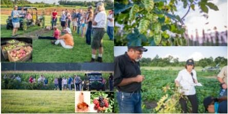WMREC Horticultural Twilight Meeting & Tour