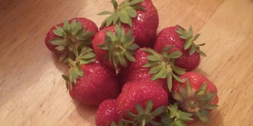 Strawberry Bonanza at Lanni Orchards June 22nd and June 23rd