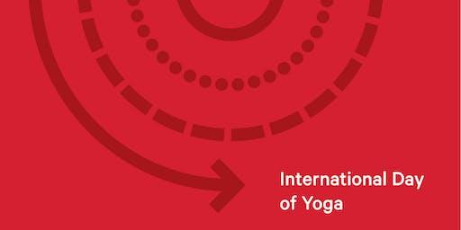 Yoga Flow with Amy Fox