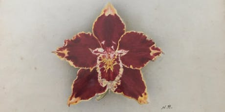 Royal Horticultural Society Orchid artists - the role and its history tickets
