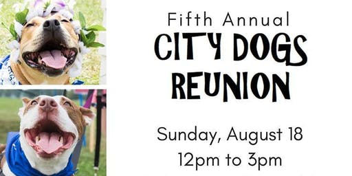 CITY DOGS Reunion 2019