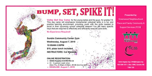 BUMP, SET, SPIKE IT!! Volley Ball Day Camp