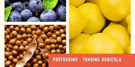 Herramientas de Comercialización para Productores Agrícolas y Exportadores. entradas