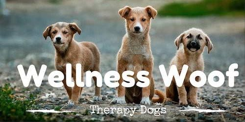 Wellness Woof- November Edition