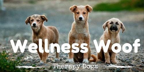 Wellness Woof- December Edition