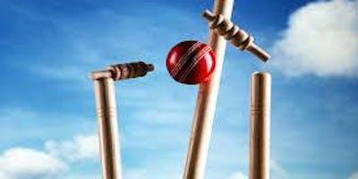 IIW All Ladies Cricket Championship