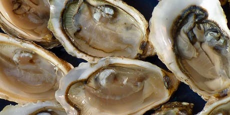 Oyster Tasting with Oyster Brothers (X6 oysters) tickets