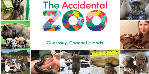 The Accidental Zoo - Family Open Day - 29th June