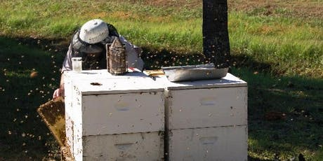 Beginning Farmer Workshop - Now You Have Bees, What's Next? tickets