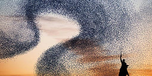 Vocal Improvisation: an advanced PNW playshop