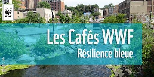 Cafés WWF // Résilience bleue urbaine