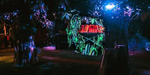 Zwielicht - Psy-Trance im Dunkelwald