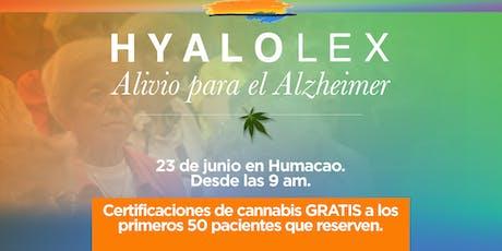 Alivio para el Alzheimer y Certificación para pacientes de Cannabis Medicinal - Llega Hyalolex (HUMACAO) entradas