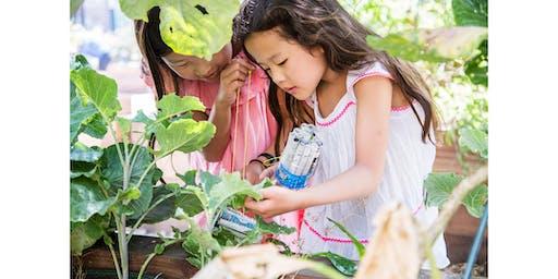 Family Garden Workshop: Tree Ecology