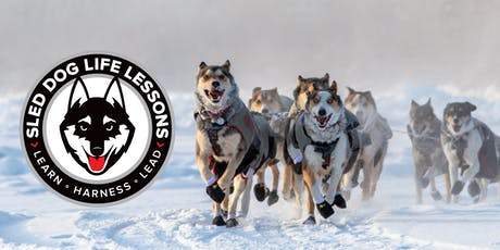 Sled Dog Life Lessons Workshop tickets