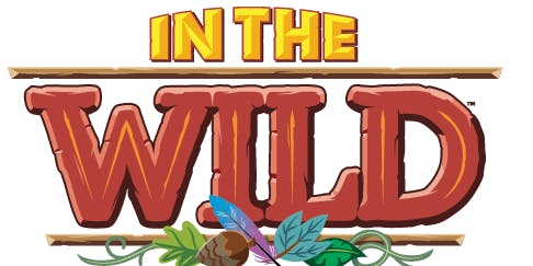 "The Bridge ""Into the Wild"" VBS"